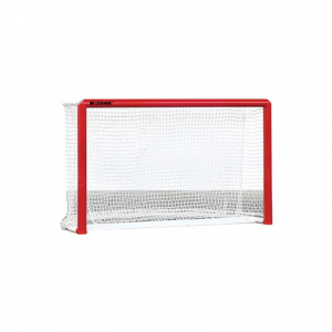 Porte Regolamentari per Hockey Pista
