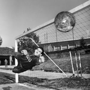 Giovanni Viola, 1956