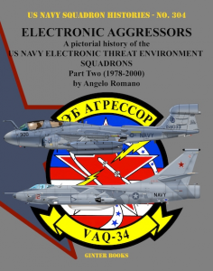 Electronic Aggressors