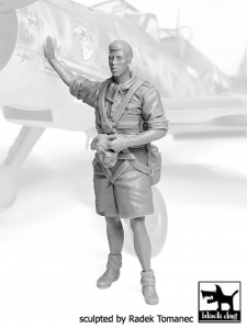 German Luftwaffe Pilot