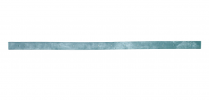BIG 48 goma de secado delantera para fregadora FIORENTINI