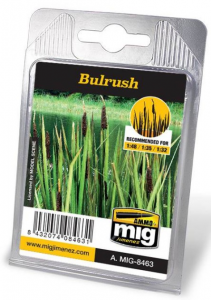 BULRUSH