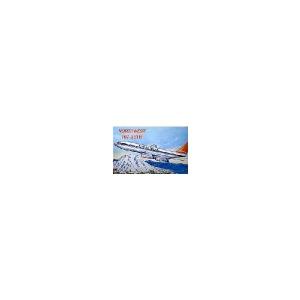 BOEING B.707-300 NORTHWES