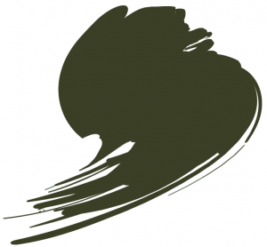 BS Mid Bronze Green (BS381C:223)