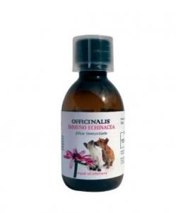 Integratore Immuno Echinacea