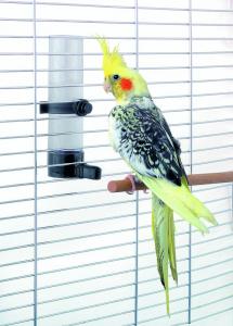 Abbeveratoio per Uccelli