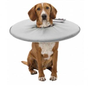 Collare elisabetta di protezione in gommapiuma per cani  TRIXIE