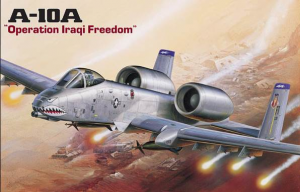 A-10A 'OPERATION IRAQ FREEDOM'