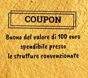 Coupon da 100 euro