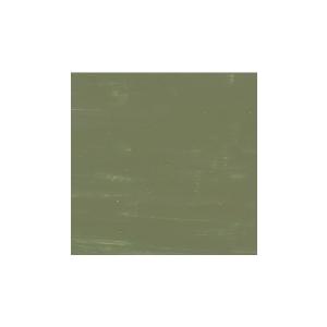 SALAMANDER LIGHT GREEN
