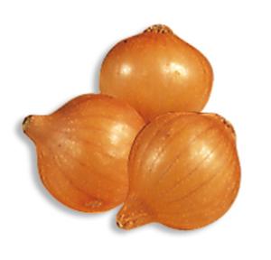Cipolla Stoccarda Sais gr.500