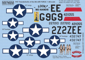 P-47 Thunderbolts