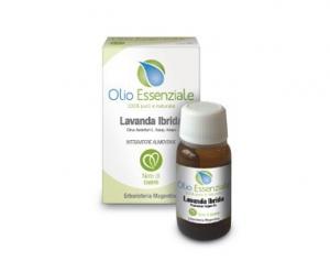 Olio Essenziale Lavanda Ibrida  10 ml