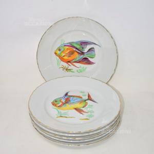 6 Piatti Monopoli In Ceramica Con Pesce E Bordo Oro