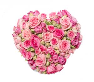 Cuore rose rosa € 75,00