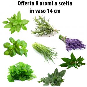 Offerta 8 aromi a scelta
