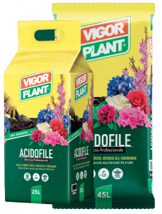 Terriccio Vigor Plant acidofile 45L € 8,95