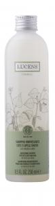 Shampoo Rinfrescante Cute e Capelli Grassi