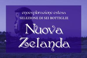 Selezione Nuova Zelanda: 6 vini