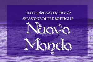 Selezione Nuovo Mondo: 3 vini