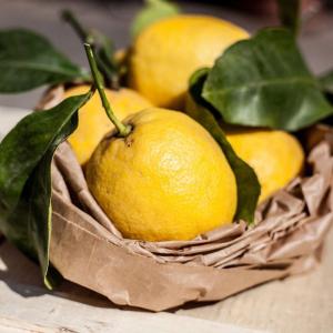 Limoni italiani igp