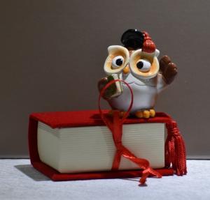 Scatolina libro + Gufo (confetti vari gusti e tipologie)