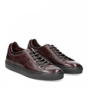 Corvari sneaker 9214 vintage marrone
