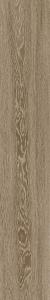 TREVERKVIEW   200X1200 ROVERE CARAMELLO - (Euro/Mq 24,28)