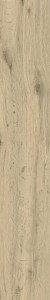 TREVERKVIEW  OUTDOOR 200X1200 NATURALE - (Euro/Mq 24,28)