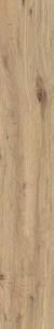 TREVERKVIEW  OUTDOOR 200X1200 MIELE - (Euro/Mq 24,28)