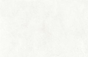 STREAM RIVESTIMENTO 200X500 WHITE - (Euro/Mq 18,79)