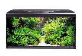 Acquario Amtra System 80 LED Nero