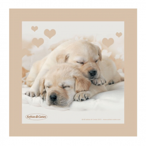 CAGNOLINI quadro in legno pannello d'arredo SOFTIES & CUTIES 20x20 cm idea regal