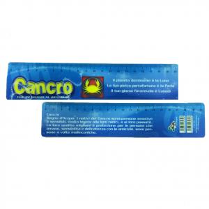 Righello scuola in plastica flessibile piatto segno zodiacale CANCRO 20 cm idea