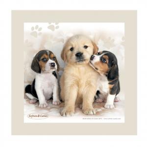 CAGNOLINI quadro in legno pannello d'arredo beige SOFTIES & CUTIES 20x20 cm idea
