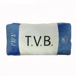 PAPA' cuscino peluches a forma targa auto bianco azzurro TVB circa 22x11x4 cm