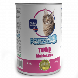 Maintenance Tonno