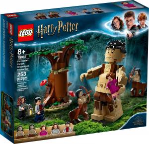 LEGO HARRY POTTER LA FORESTA PROIBITA: L'INCONTRO CON LA UMBRIDGE 75967