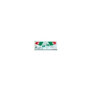 AIR SEYCHELLES DHC 6 (MAT