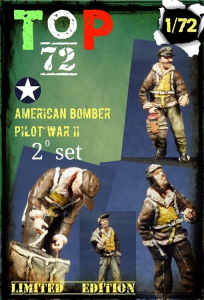 American bomber pilot WWII