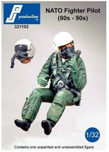 NATO pilot seated