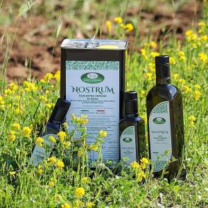 Nostrum olio extra vergine d'oliva - Marco Spinosa