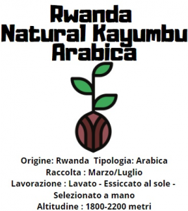 Rwanda Natural Kayumbu  Arabica 200gr in grani tostatura media/scura-2