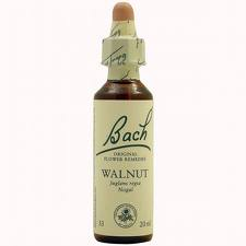 Bach 33 Walnut Nogal 20ml