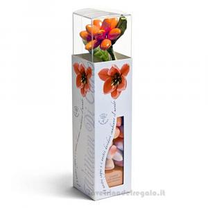 Confetti Le Clarisse gelatine gusto fragola 125gr/1Kg William Di Carlo Sulmona - Italy