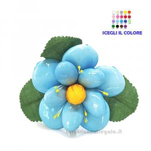 Begonia azzurra Fiore di Confetti William Di Carlo Sulmona - Italy