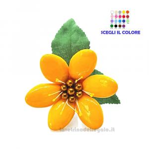 Acetosella gialla Fiore di Confetti William Di Carlo Sulmona - Italy