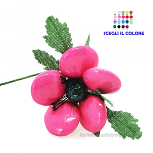 Anemone rosa Fiore di Confetti William Di Carlo Sulmona - Italy