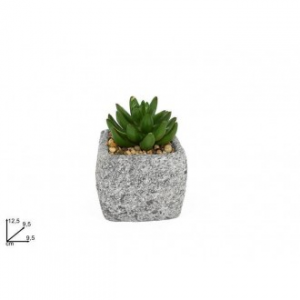 Due Esse Pianta Grassa Con Vaso Grigio Decorato Tipo Pietra Adatto per Decorazioni Esterne da Giardino