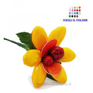 Margherita gialla con coccinella Fiore di Confetti William Di Carlo Sulmona - Italy